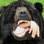 Sacco a pelo a forma di orso